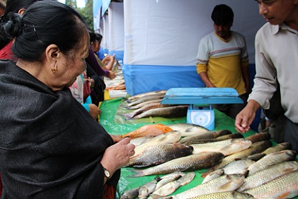 Fish farmers selling fresh fish during the 2nd Aqua Fest organised by the Meghalaya fisheries department at state central library on Wednesday